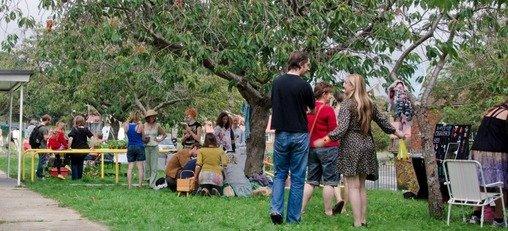 Visitors to manor farm festival
