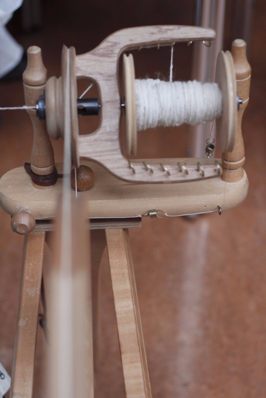 seedy sunday brighton 2015 spinning wheel