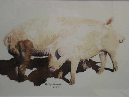 Two Porkers, watercolour painting by Phillip Knaggs
