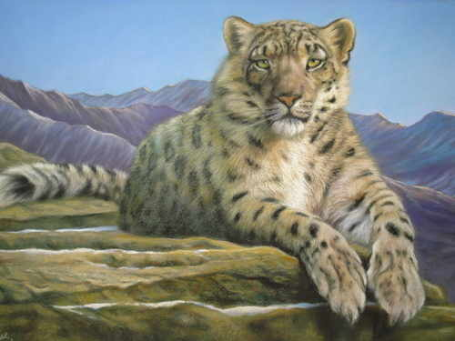 Snow Leopard, pastel painting by Mark Blue