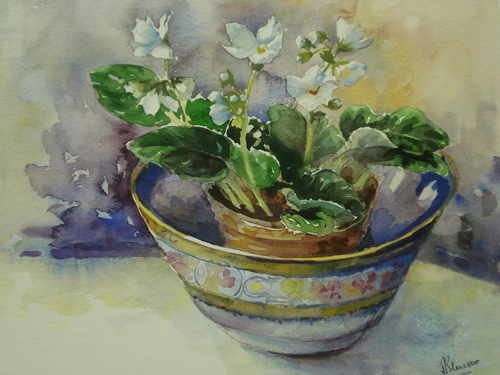 White Violets in a bowl, watercolour painting by Julia Blencowe