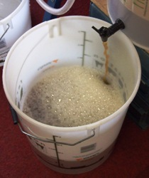 biab14 - when cool drain into the fermenter