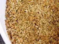 The mixed grain waiting to be added to the Mash Tun