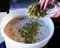 When it comes to the boil, add the first batch of hops