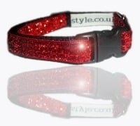 Glamorous Small Dog And Puppy Collars