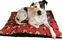Arthur Crossbreed Rescue Mongrel Dog Bed