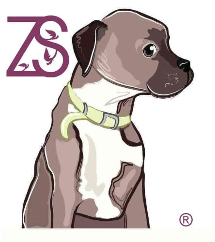 Registered-ZS-logo