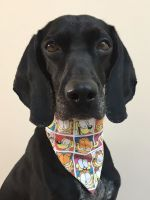 Childrens Easter Half Term Spot Pet Bandana Session Workshop Tuesday 7th April From 10:30am