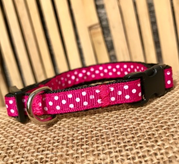 Bright Pink Polka dot spotty small dog collar fuchsia
