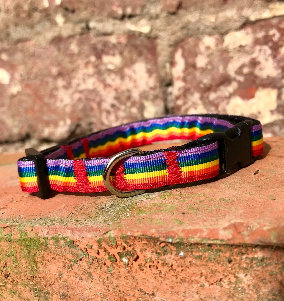Rainbow adjustable dog puppy collar pride LGBT