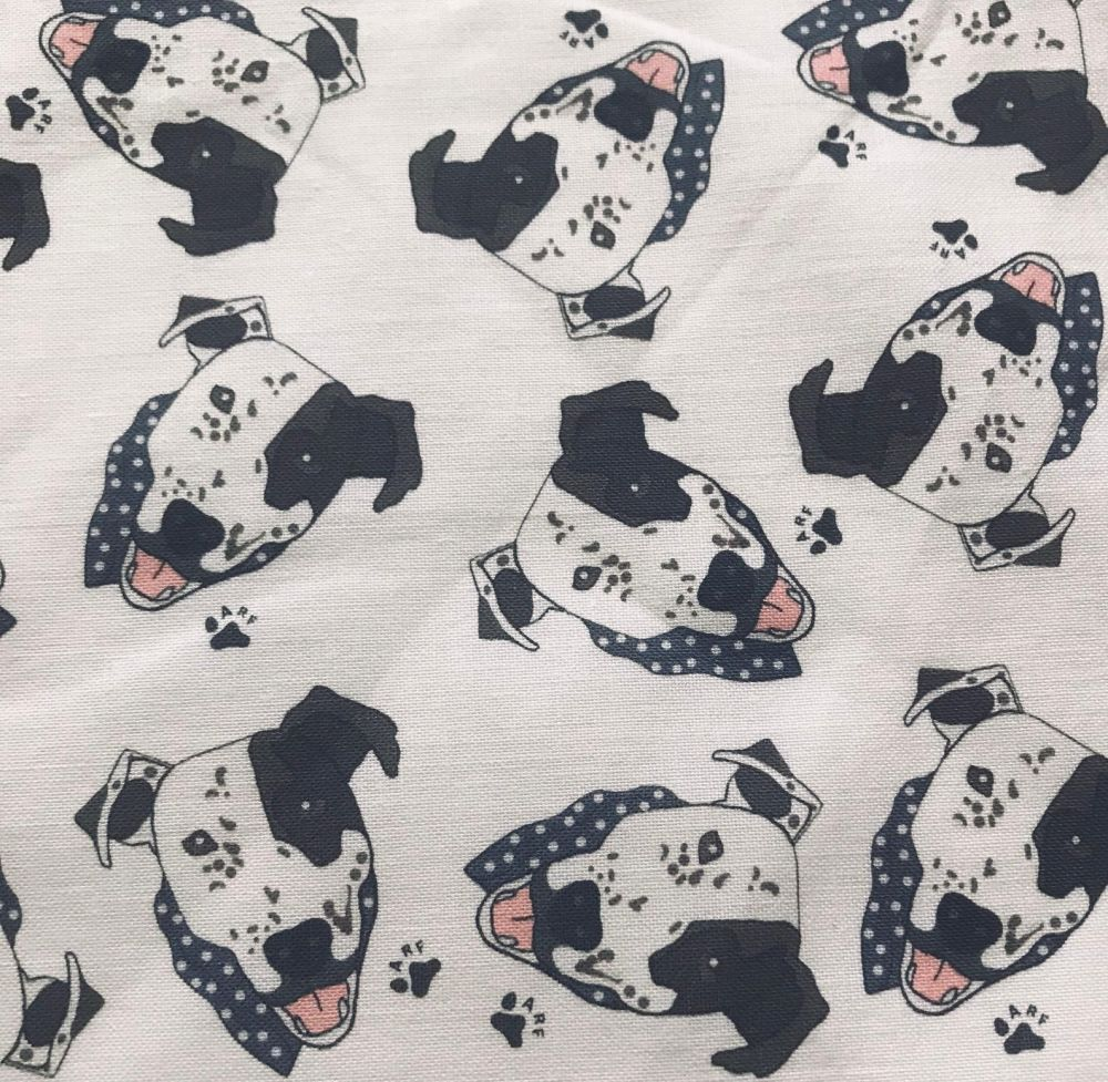 Arthur White Crossbreed Staffy Staffordshire Bull Terrier Pittie Pitbull Do