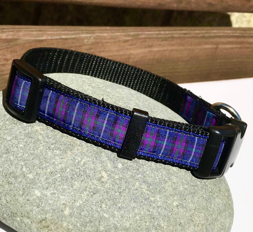 Pride Of Scotland Blue And Purple Tartan Dog Collar