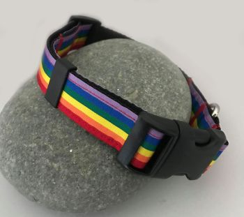 Rainbow Stripe Adjustable Dog Collar Gay Pride LGBT Celebration Multi Colour Color Matching Lead Leash
