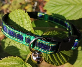 Gordon Tartan Clan Cat Collar Blue Green Yellow