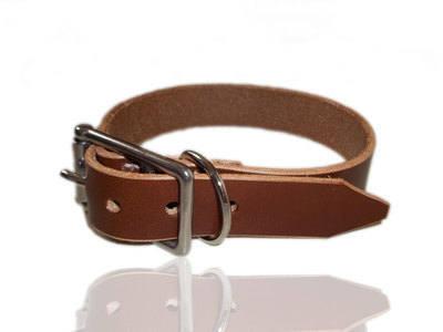 Named Dog Collars Uk