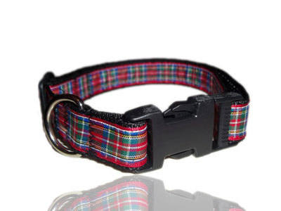 Red, Green And Blue Royal Stewart Tartan Dog Collar