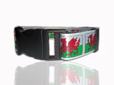 Welsh Dragon Wales Adjustable Dog Collar