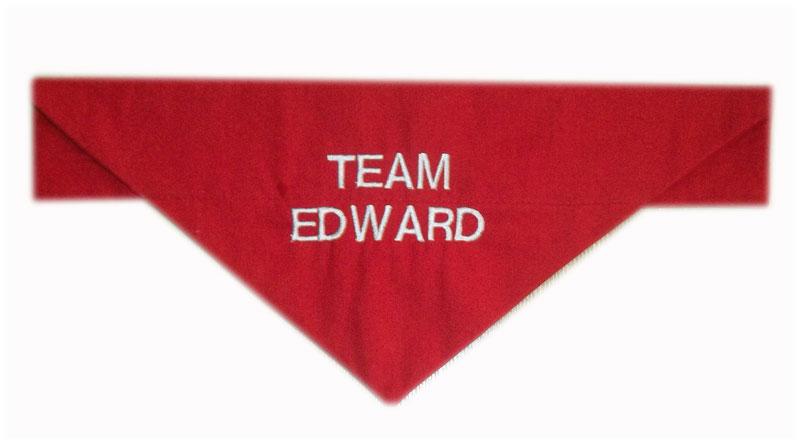 team-edward bandana