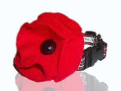 Poppy Appeal Royal British Legion Collar Flower