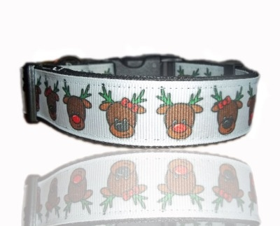 Rudolph Red Nose Reindeer Dog Collar