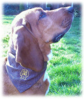 Ruby Monster Tweed Country Chic Bandana Neckerchief