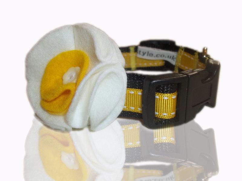 daffodil-saddle-stitch-daisy collar