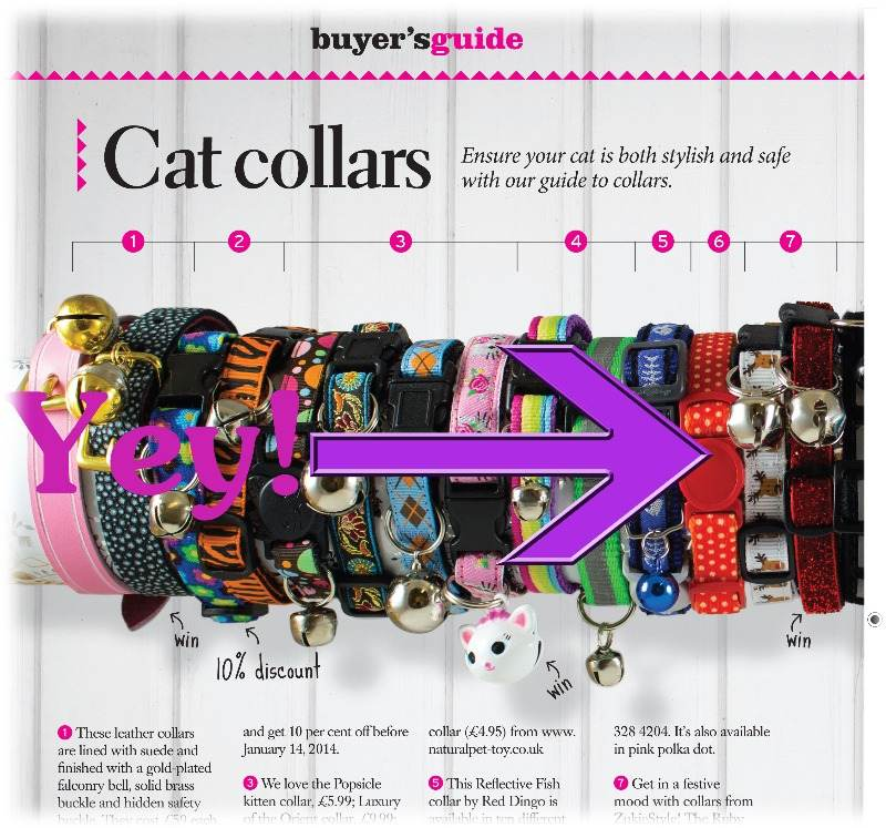 your cat buyers guide magazine feature