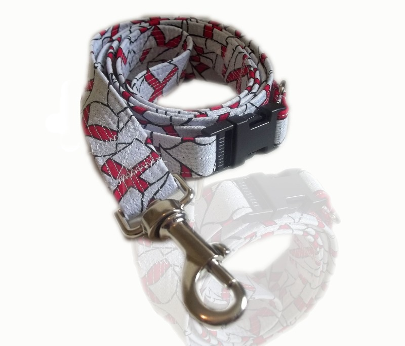England Collar And Lead Set