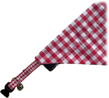 Red And White Gingham Bandana And Collar Set