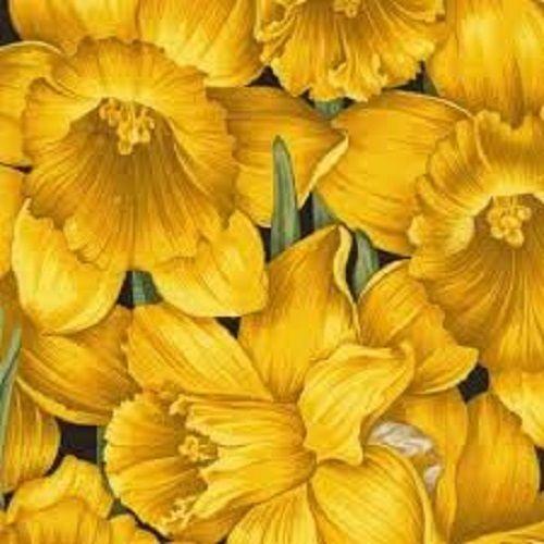 daffodil fabric