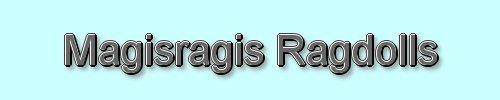 magisragis ragdolls, site logo.