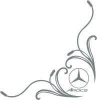 Mercedes-Benz AROCS Truck Side Window Stickers ( pair )