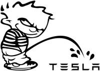 Pee Boy Tesla