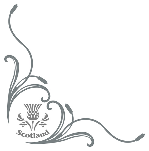 SCOTISH THISTLE