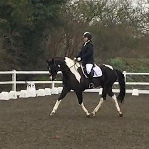 Flash dressage jan 18 (2)