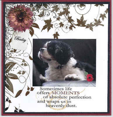 Personalised Sympathy card for Pet