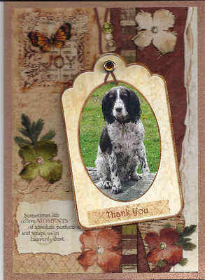 Personalised Card with your Pet photo