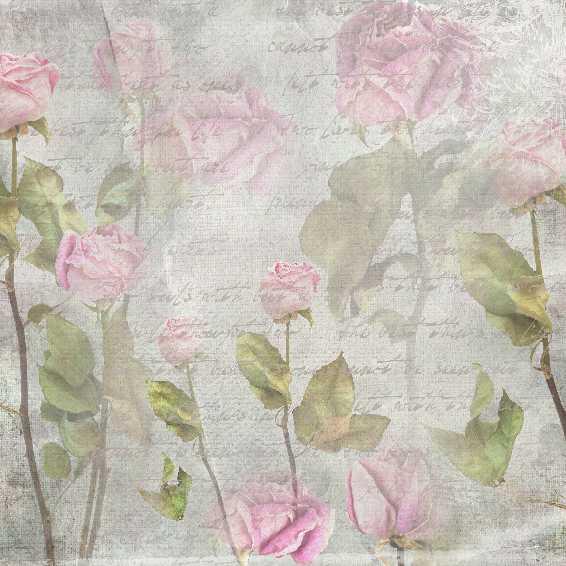 vintage pink rose paper