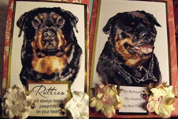 Mattis Rotties