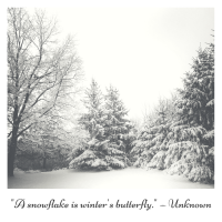 _A snowflake is winters butterfly._ — Unknown