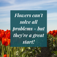Flowers cant solve all problems - but theyre a great start!