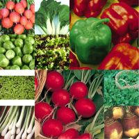 10 packs Vegetable seeds - Lettuce, Rocket, onion, carrot etc