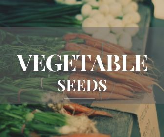 Vegetable seeds