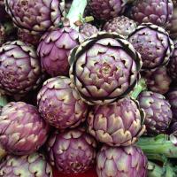 Artichoke Violet de Provence Seeds