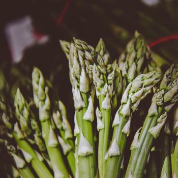 Asparagus Mary Washington seeds