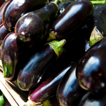 Aubergine Eggplant Black Beauty Seeds