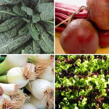 4 packs of vegetable seeds Kale, beet, onion, lettuce