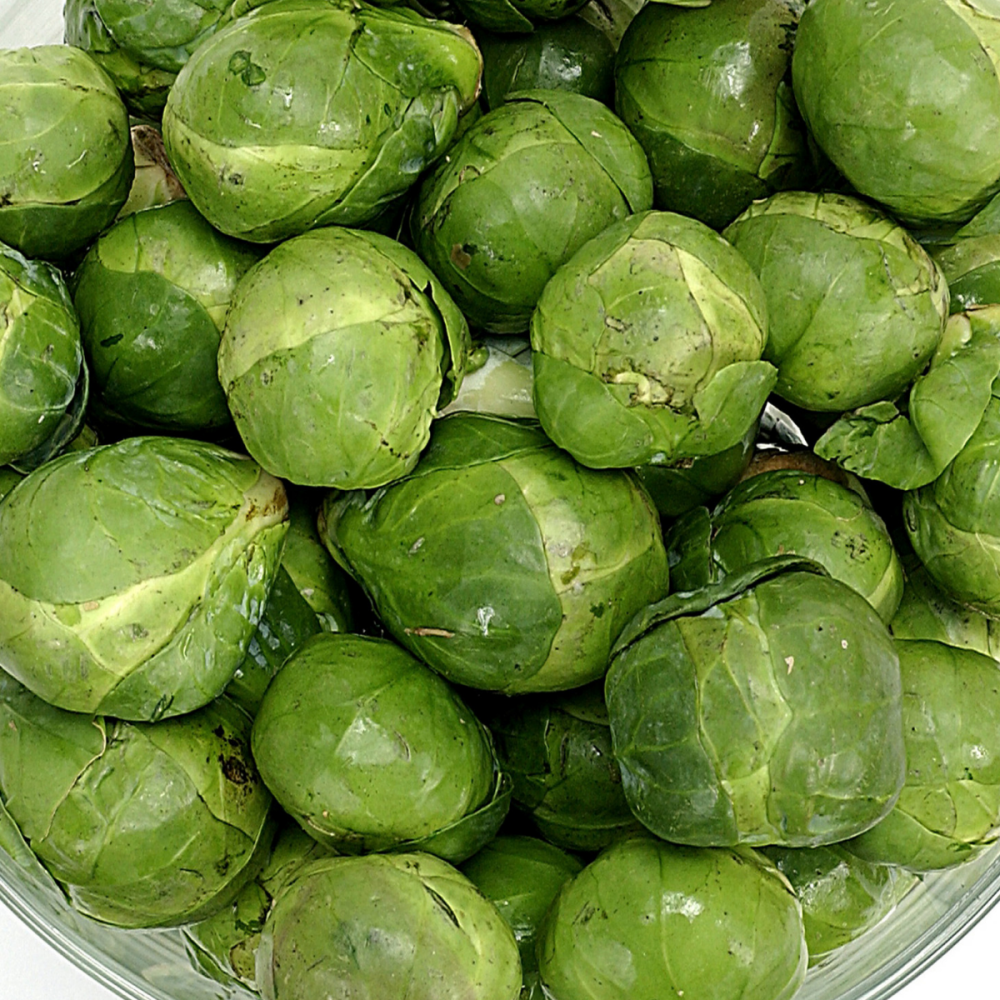 Brussel Sprouts - Evesham special Seeds