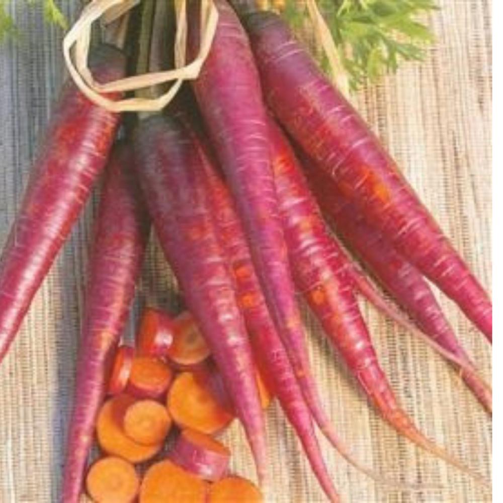 Carrot Cosmic Purple seeds