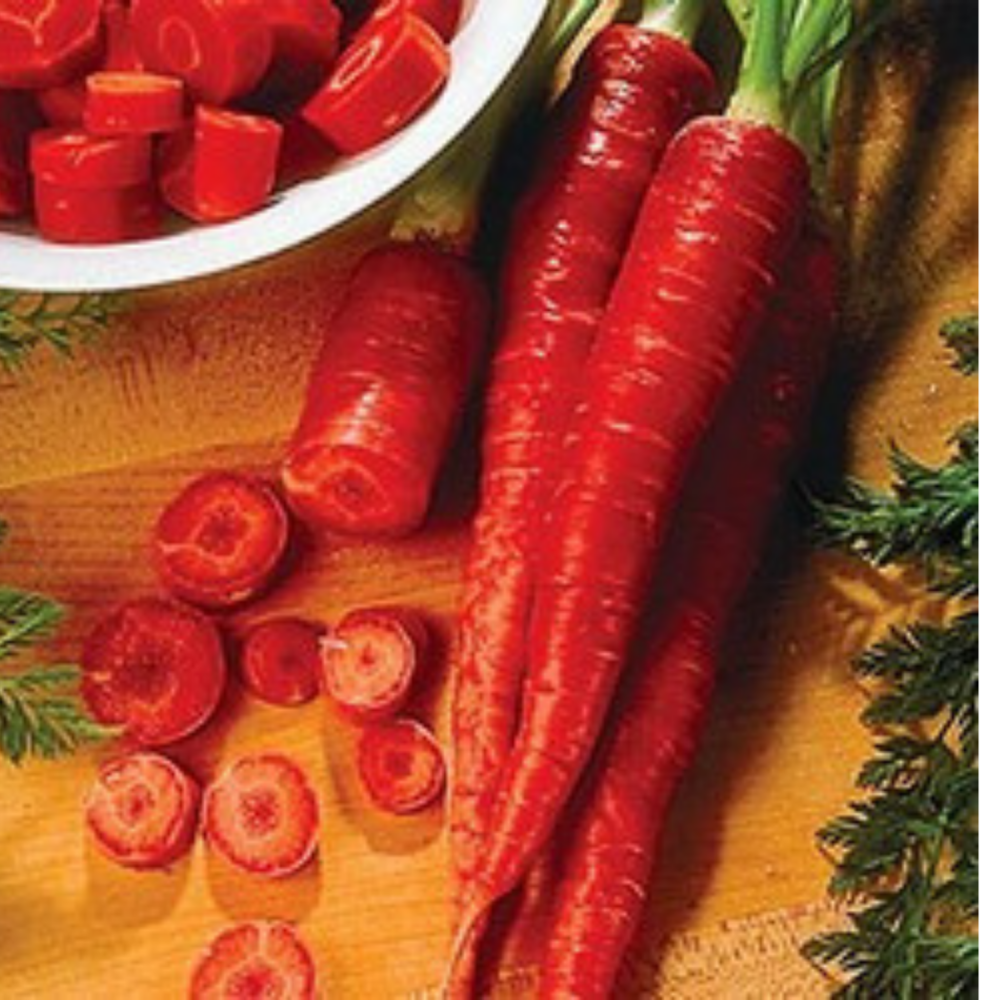 Carrot - Atomic Red  Finest Seeds